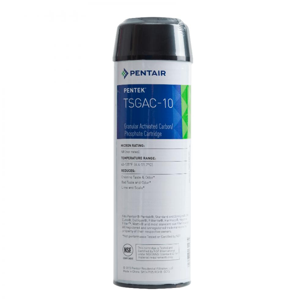 Картридж Pentek TSGAC-10